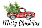 CHRISTMAS TREE DELIVERY